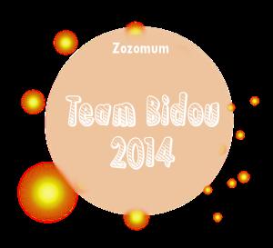 teambidou2014n