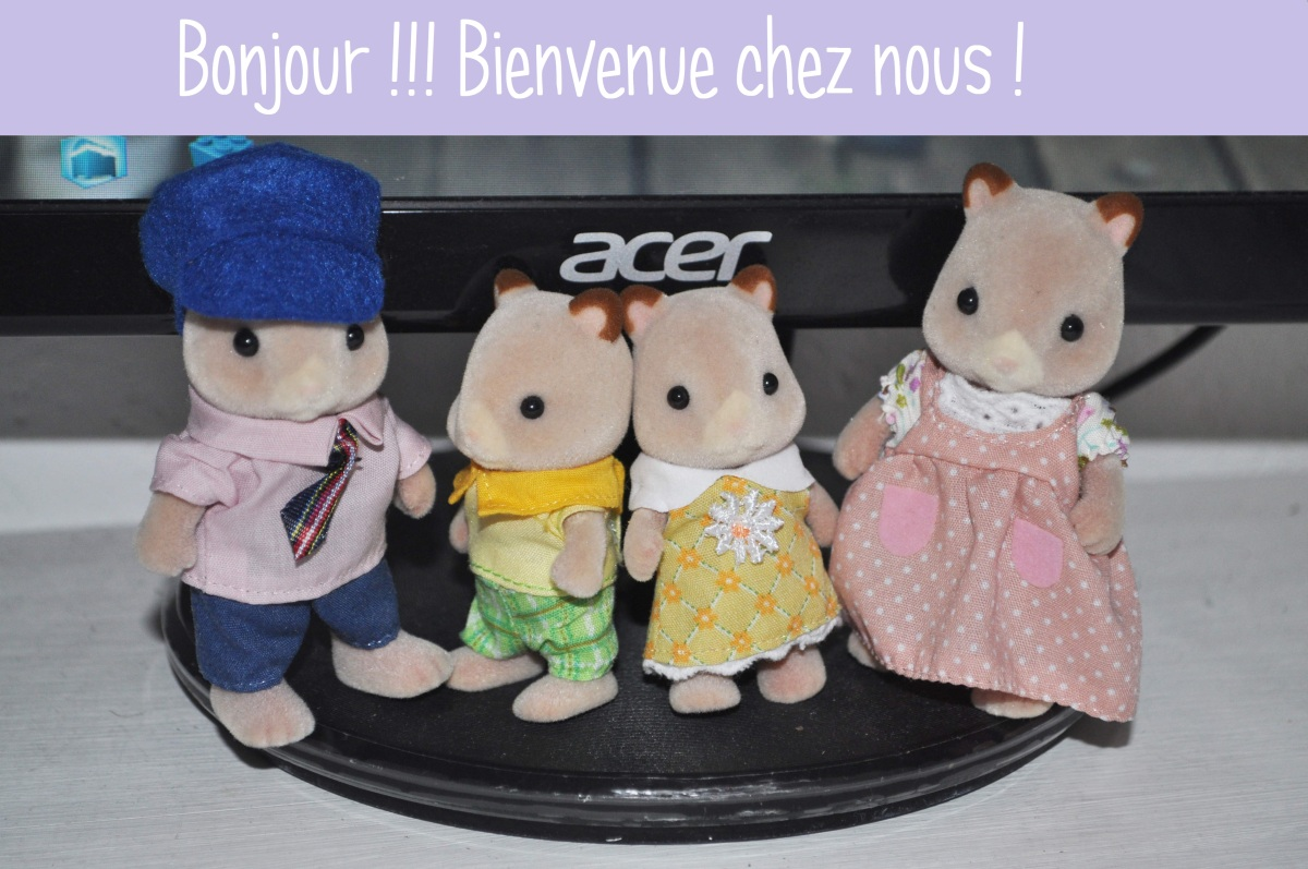 E-Baby shower J-7 J'adopte une famille Sylvanian